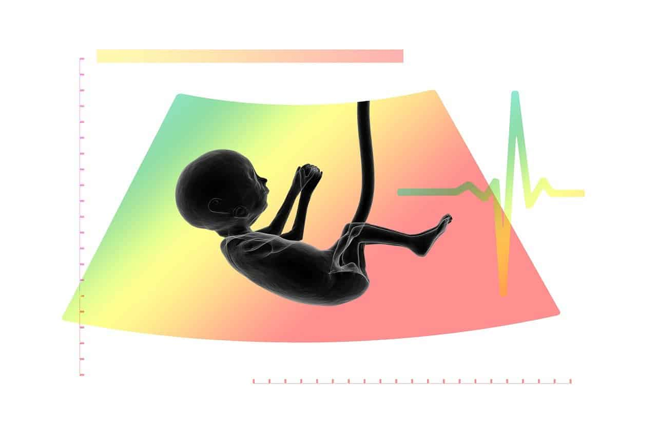 עובר של תינוק